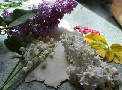 Kwiaty iglina – propozycja dla Klubu Przyjemnych Spotkań
