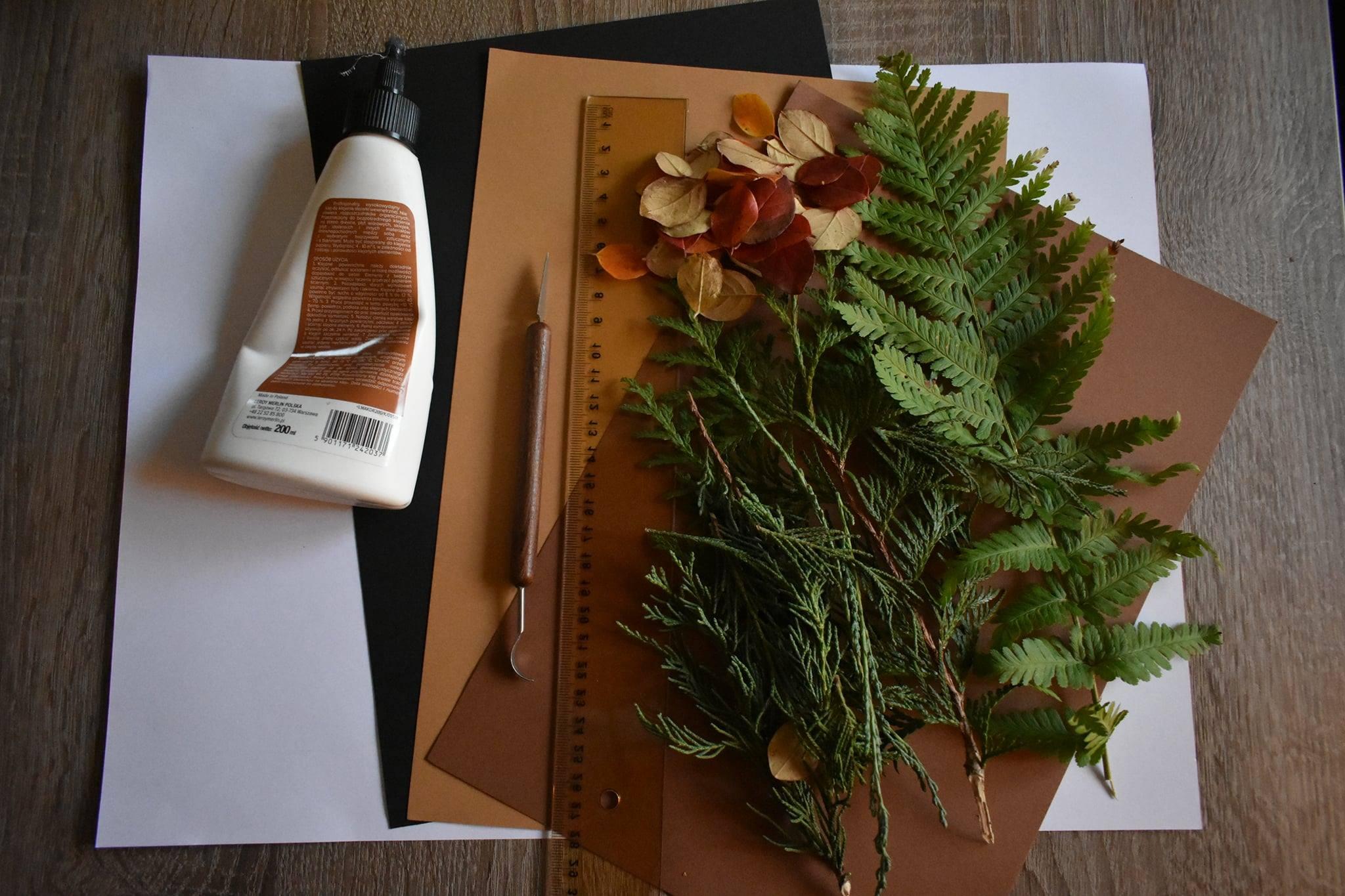 Kolorowa kompozycja zelementów roślin – zajęcia manualne