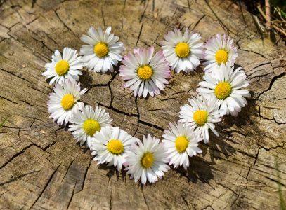 Bajeczne życzenia dla MAMY:)
